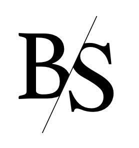 logo Bodyshapes Institut